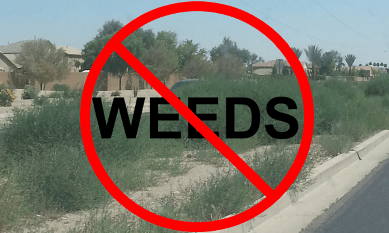 Weed Control Along Ironwood Road